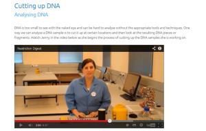 LMS-video-publish