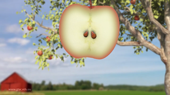 Apple-animation-thumbnail